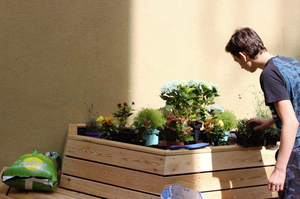 l'adolescent choisit la place des nouvelles plantes