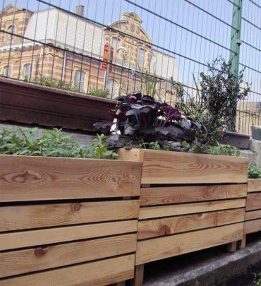 les bacs à végétaux devant la gare de Laeken